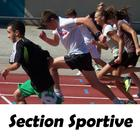 section-sportive