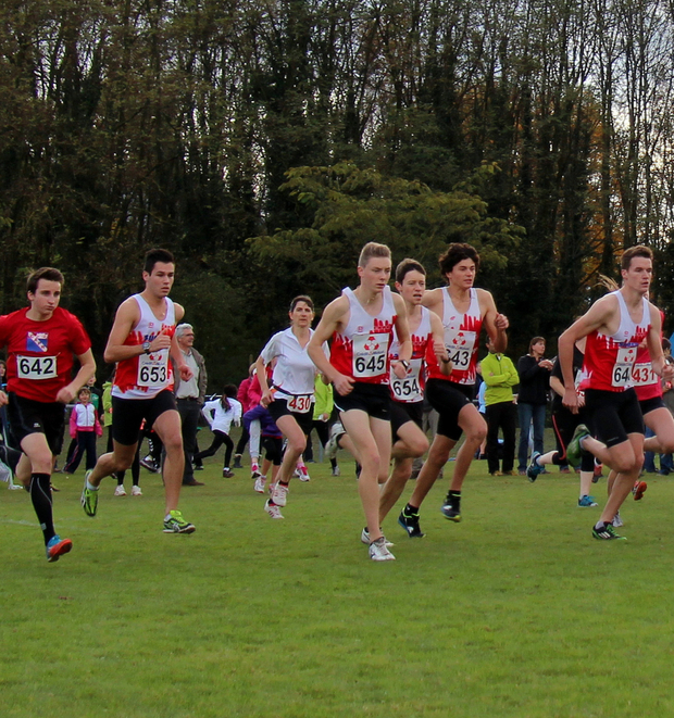 16 novembre : cross national Bayard